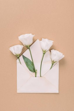 Top view of white eustoma flowers in envelope on beige background