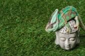 Fotografie krásné světlé zelené chameleon sedí na hlavě Budhy