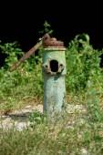 zblízka pohled staré grungy vodní fontány a zelené rostlin za
