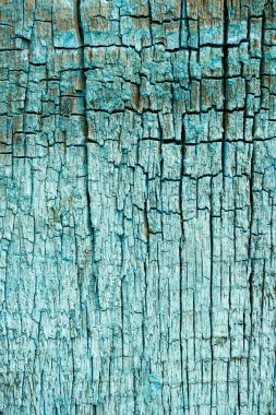 Full frame of old turquoise wooden texture as backdrop stock vector