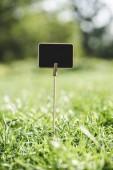 Fotografia bordo di legno vuoto sul bastone in erba verde
