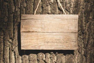 Empty wooden board hanging on grey bark of tree stock vector