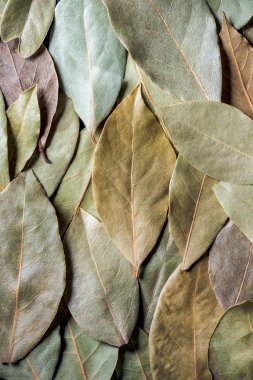 top view of aromatic dried bay leaves background