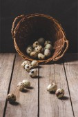 Fotografie organic quail eggs in wicker basket on rustic wooden table