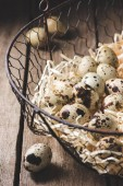 Fotografie close-up view of organic quail eggs in shavings on wooden table