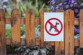 close-up view of dog forbidden sign on wooden fence in park