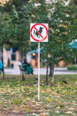 No dog poop sign on lawn in autumn park