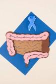 pohled shora rakoviny prostaty povědomí o modrou stuhu a lidského tlustého střeva na modré s béžová