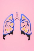 top view of human lungs with cigarettes on pink, lung cancer awareness concept