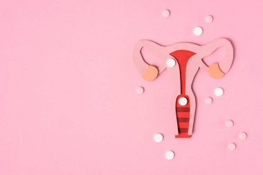 top view of female reproductive system and pills on pink