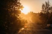 Fotografie krásný oranžový východ slunce nad stromy a auto na silnici