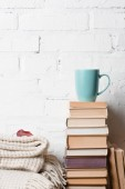 pile of books, blanket with autumn leaf and cup of hot beverage near white brick wall