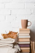 Photo pile of books, blanket, dry autumn leaf and cup of hot beverage near white brick wall