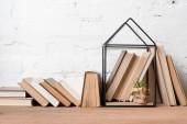 Bücher und grüne Topfpflanze in Hausmodelldekoration auf Holztisch