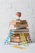 model mozku na hromadu knih a malé barevné žebříky