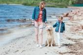 Familie spaziert mit Golden-Retriever-Hund am Meeresufer