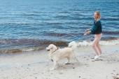 attraktive, glückliche Frau, die mit Hund am Ufer des Meeres spazieren geht