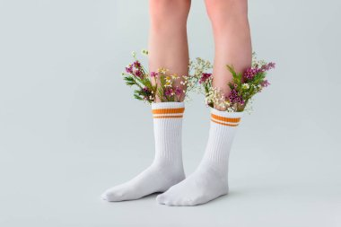 cropped shot of female legs in socks with fresh flowers isolated on grey