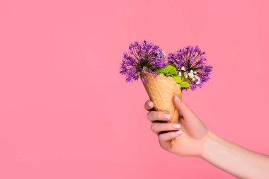 cropped shot of female hand holding waffle cone with beautiful flowers isolated on pink