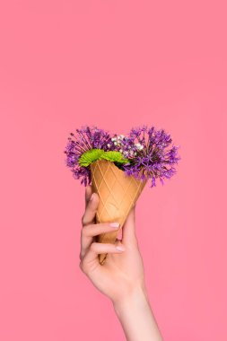 close-up partial view of female hand holding waffle cone with beautiful flowers isolated on pink