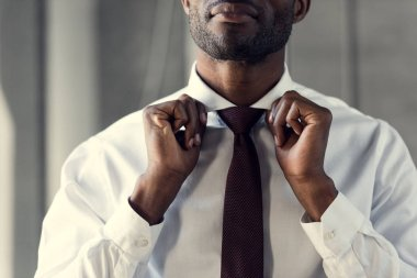 Cropped shot of young businessman in white shirt putting on his tie stock vector