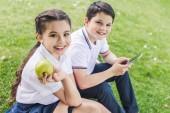 žáci společně pomocí smartphone, zatímco sedí na trávě a při pohledu na fotoaparát
