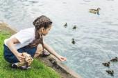 Fotografie adorable schoolgirl feeding ducklings in pond
