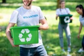 cropped view of volunteer holding green recycling box in park with friends on background