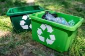 Fényképek zöld újrahasznosítás dobozok, műanyag Kuka állt a gyep