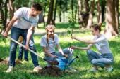 Freunde mit Schaufel und Gießkanne pflanzen neue Bäume im Park