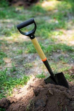 one shovel in soil for planting in park