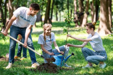friends with shovel and watering can planting new trees in park