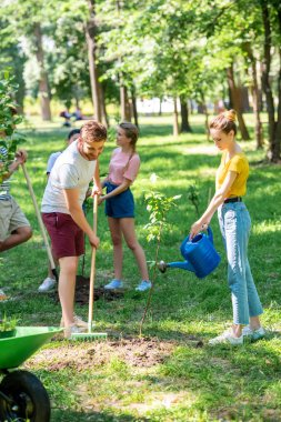 men and women planting new trees and volunteering in park