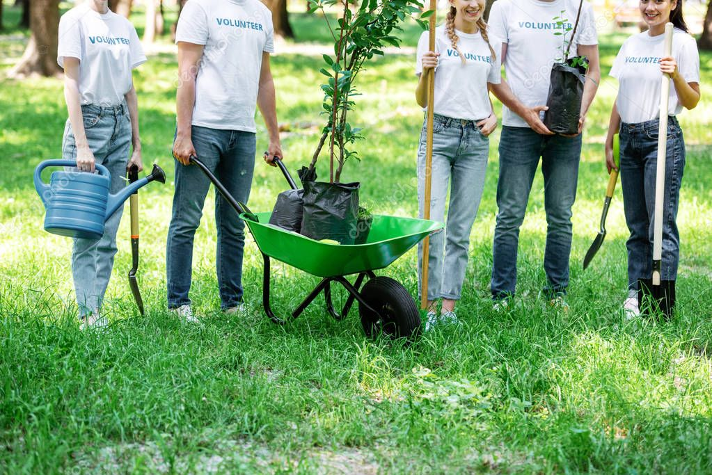 cropped view of volunteers planting trees in park together