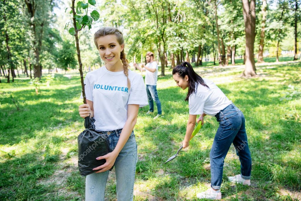 volunteers planting new tree in park together