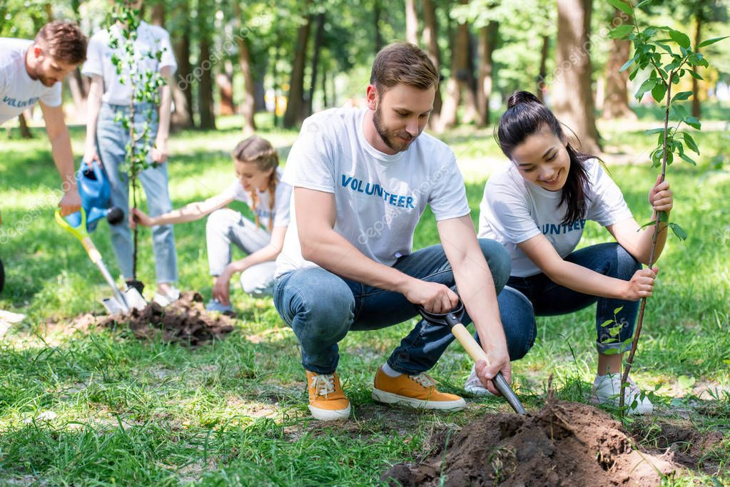 young volunteers planting new trees in park