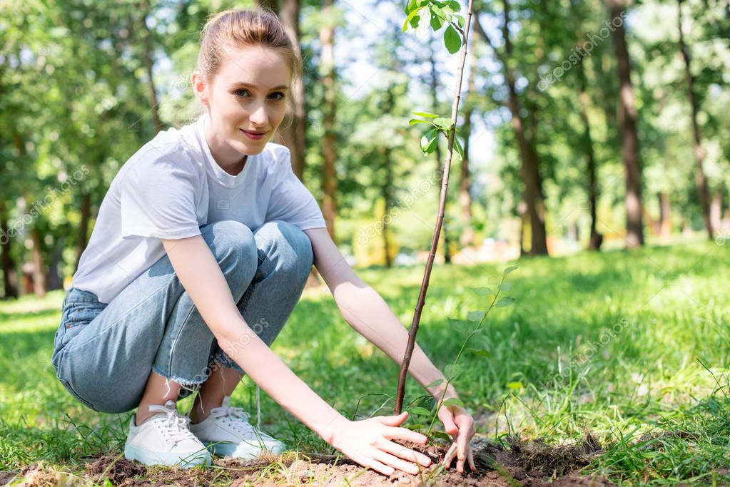 young attractive volunteer planting new tree in park