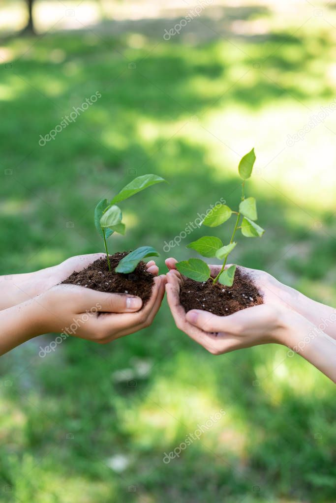 cropped view of girls holding ground with seedlings in hands