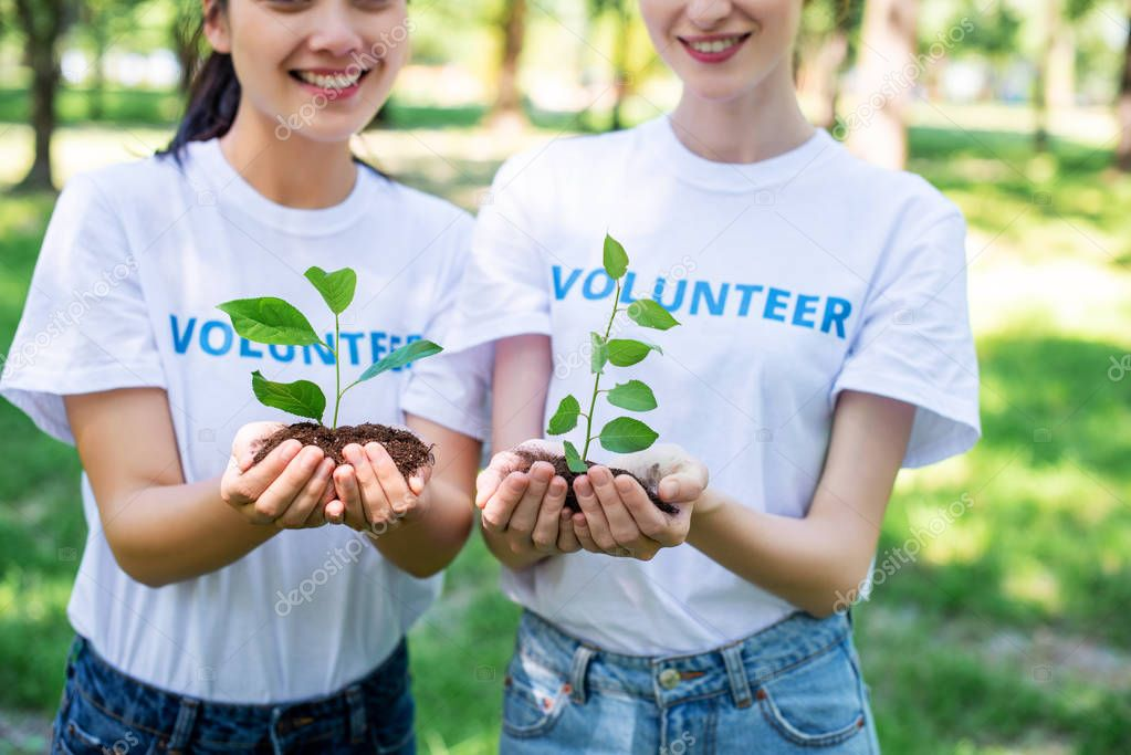 cropped view of volunteers holding soil with seedlings in hands