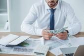 Oříznout obrázek obchodní poradce počítání peněz v úřadu