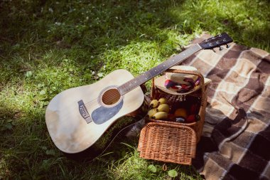 basket for picnic with bananas and acoustic guitar in park