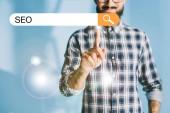 oříznutý pohled vývojář v kostkované košili ukazující Seo search bar
