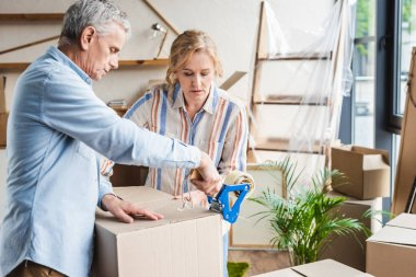focused senior couple packing cardboard boxes while moving home
