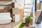 Fotografia scatole di cartone, laminati tappeto, verde pianta dappartamento e mobili nella nuova casa durante il trasferimento