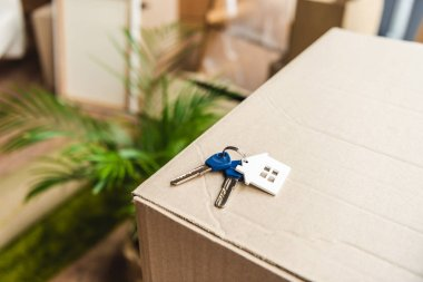 close-up view of keys from new house on cardboard box during relocation