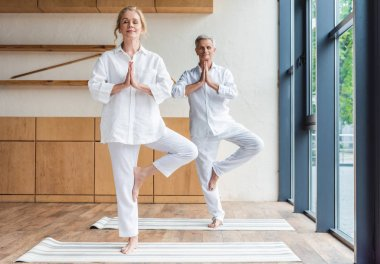 senior couple performing tree pose on yoga mats