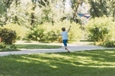 back view of cute little boy playing with colorful kite in park