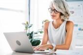 krásné kavkazské podnikatelka pomocí přenosného počítače v kanceláři