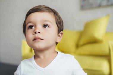 portrait of adorable little boy at home
