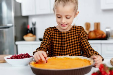 adorable little child decorating thanksgiving pumpkin pie with berries